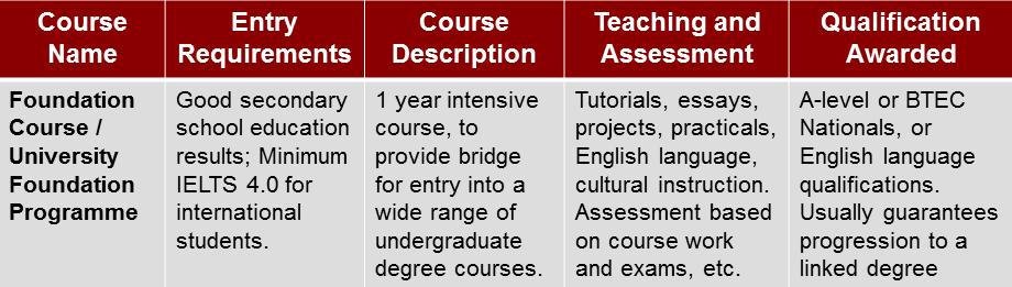 University Foundation Programme